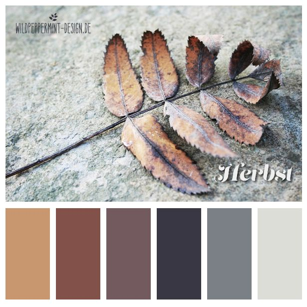 Grau Farbpalette: Gedeckte Farben, Herbsttöne, #Farbpalette #Farbinspiration