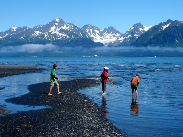 15 Little Known Beaches In Alaska That Are Ideal For A Summer Outing Kenai Fjords National Park Alaska Travel Alaska Vacation
