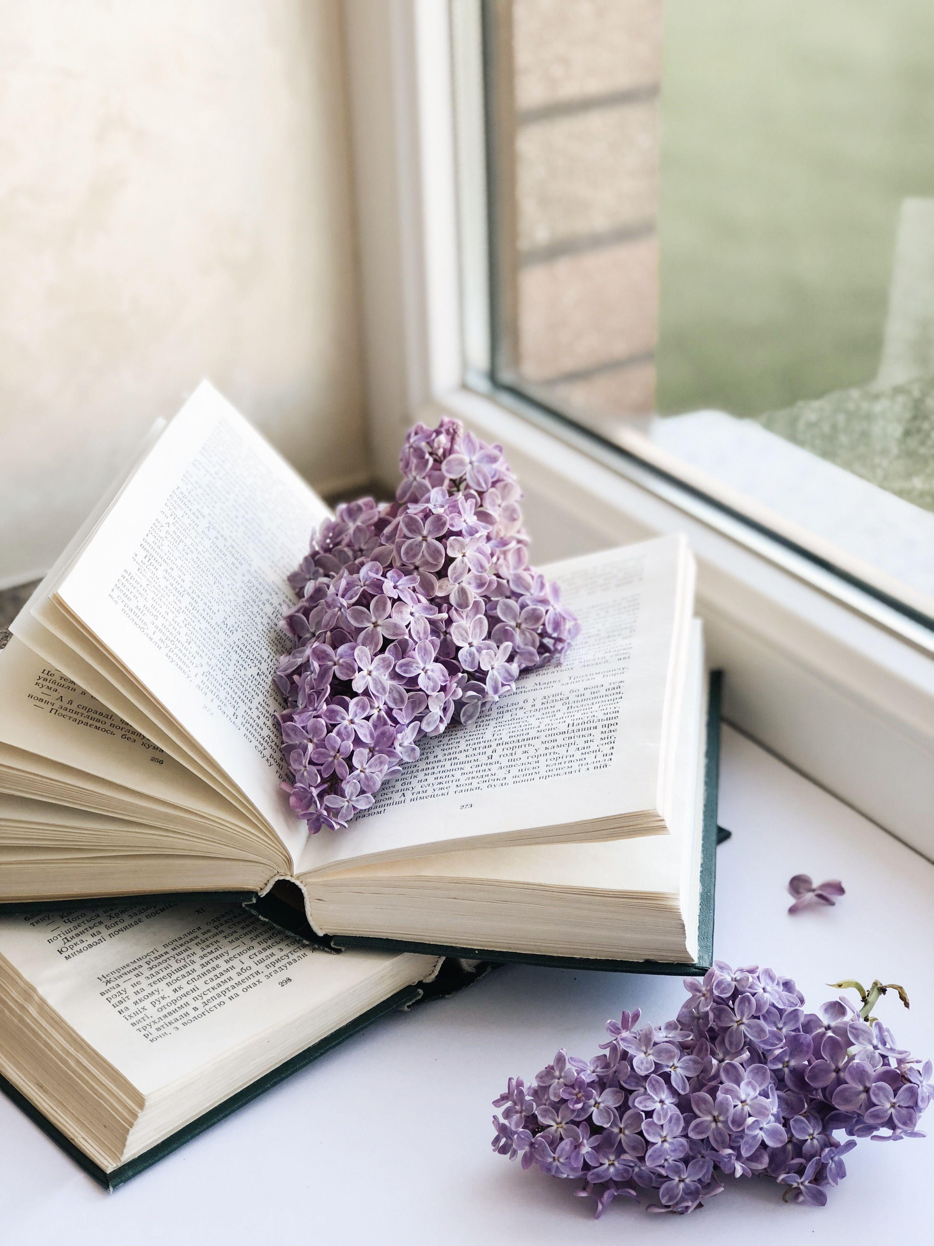 Книга цветы картинка