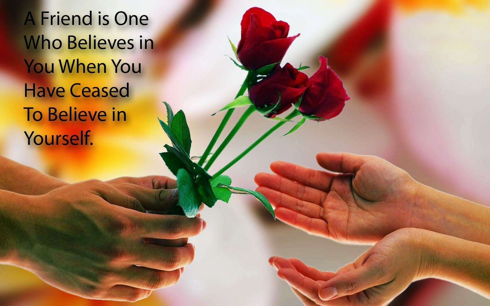 Happy Friendship Day Wishes For All Friends Friendship Quotes Images Friendship Images Friendship Quotes Wallpapers Friendship rose day images for friends