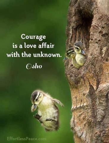 Courage is a love affair with the unknown.~Osho