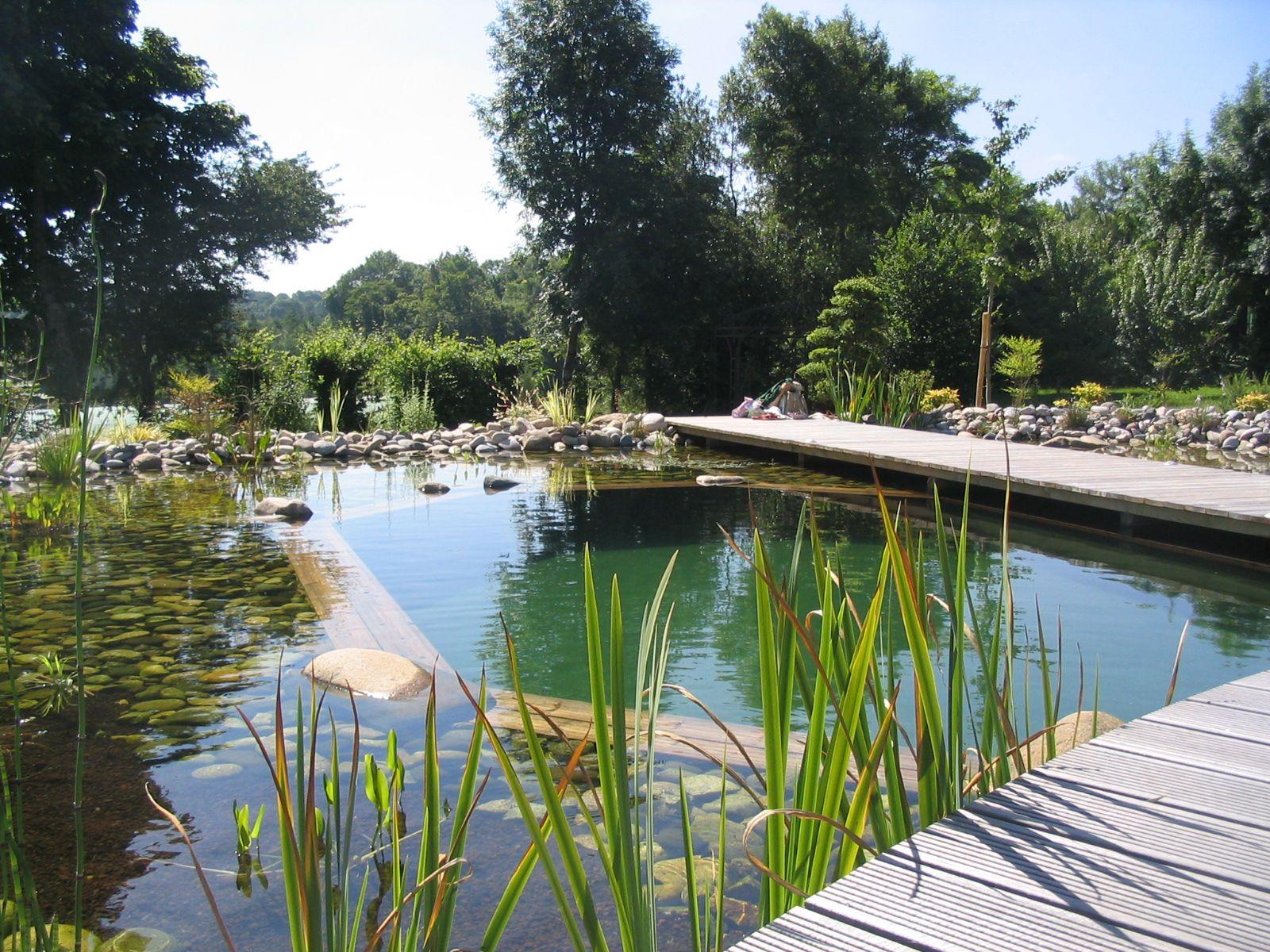 rebeyrol, rebeyrol créateur de jardins, bassin baignade, bassin