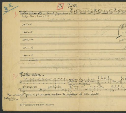 [Vademecum] Trillo [Luigi Silva Personal Papers] :: Cello Music Collections
