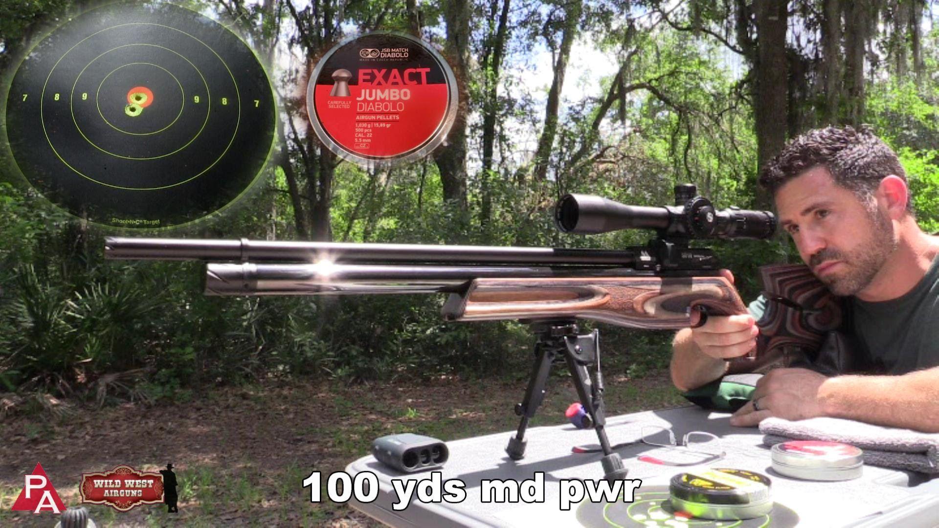 Pin on Airgun stuff