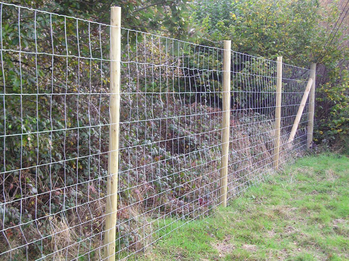 Deer Fencing_HR.JPG (1137×850) | dog solutions | Pinterest | Fences ...