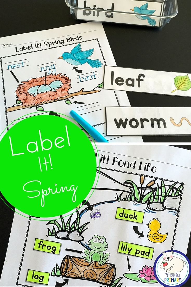 Label a Picture - Spring   Sight words kindergarten, First ...