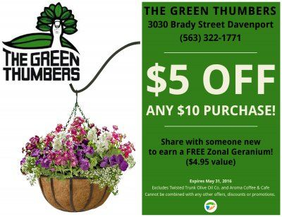 Get your #garden ready for Summer at The Green Thumbers in Davenport ...