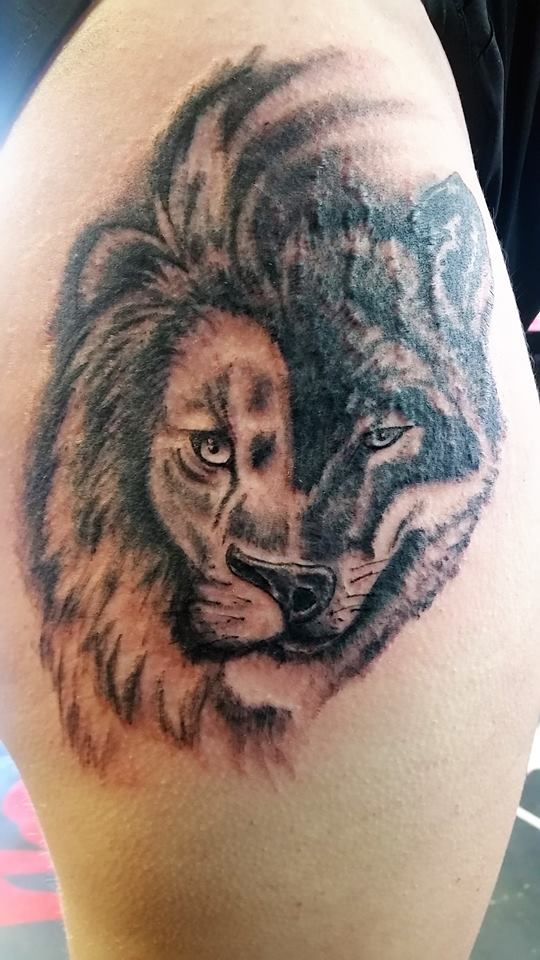 e7fbcc57a wolf #lion #hybrid #blackandgrey #thigh #tattoo #studio13tattoomg ...