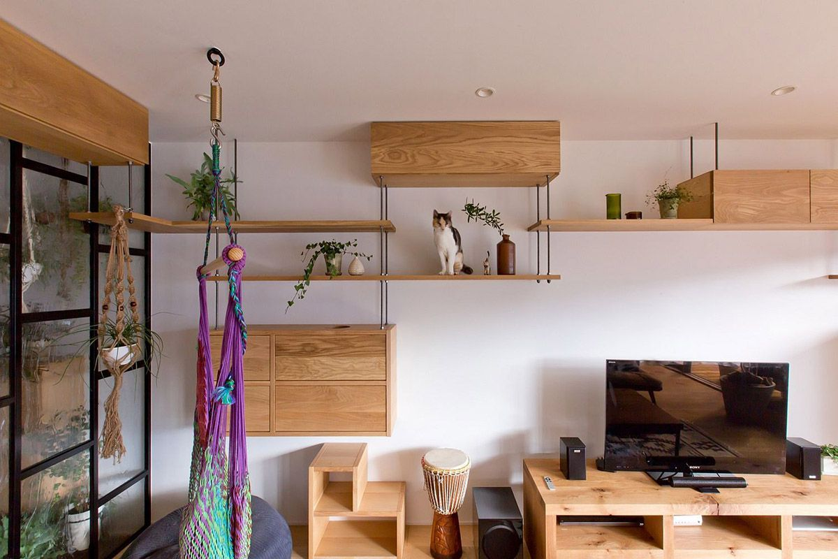 All The Furniture Allows Cats To Jump Easily From Room