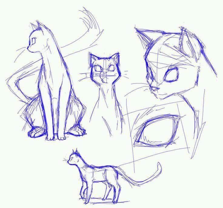 Pin von Padujdao auf Animal | Pinterest | Zeichnen, Katze zeichnen ...