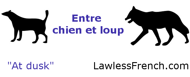 Entre Chien Et Loup French Expressions French