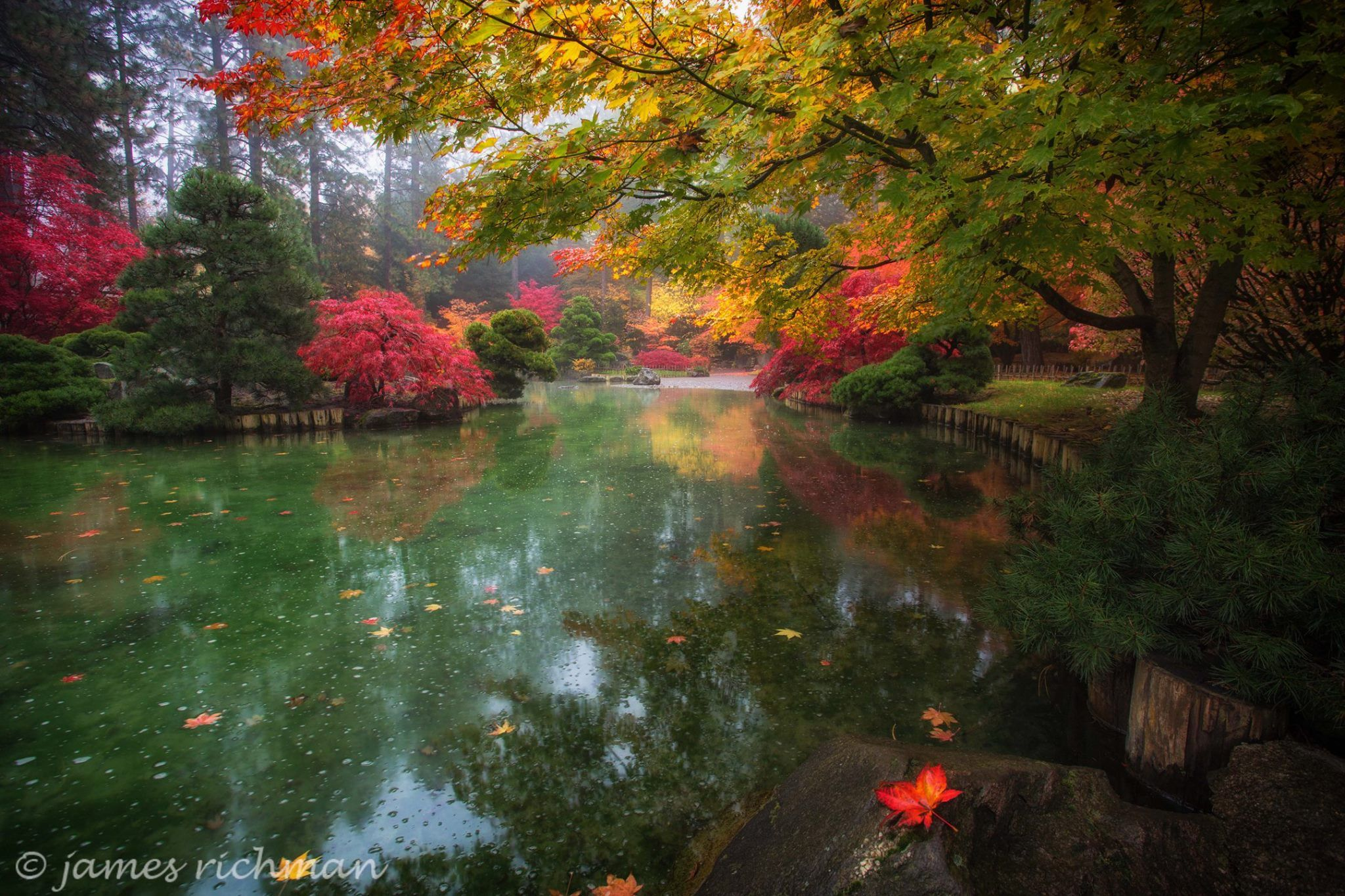 James Richman Photography ~ Early Autumn at Manito Park ~ Spokane ...