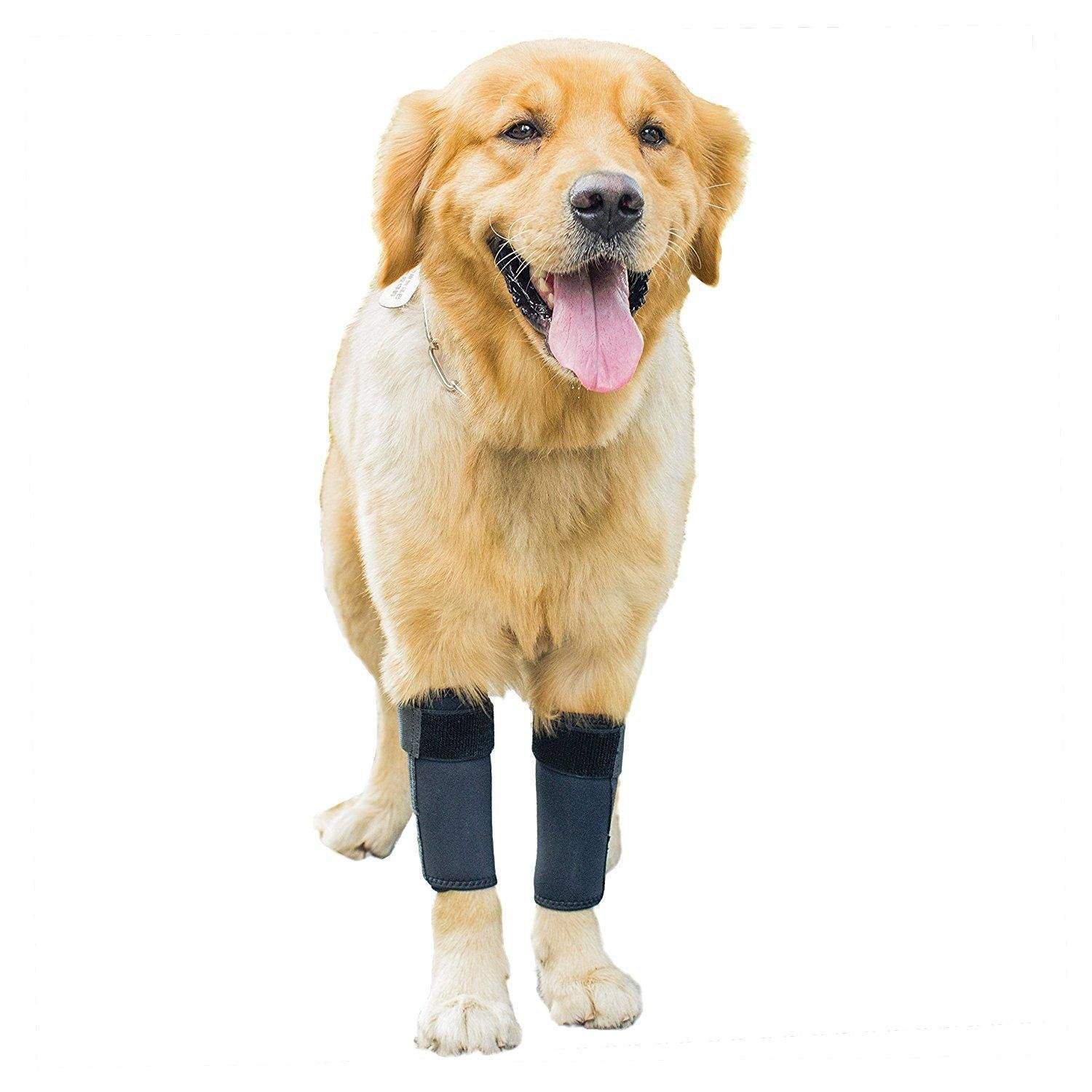 Find great deals for Dog Front Leg Wrap Brace Pets Joint