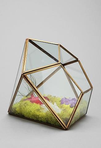 Geo mini garden