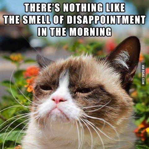 Grumpycat Funny Grumpy Cat Memes Grumpy Cat Meme Grumpy Cat