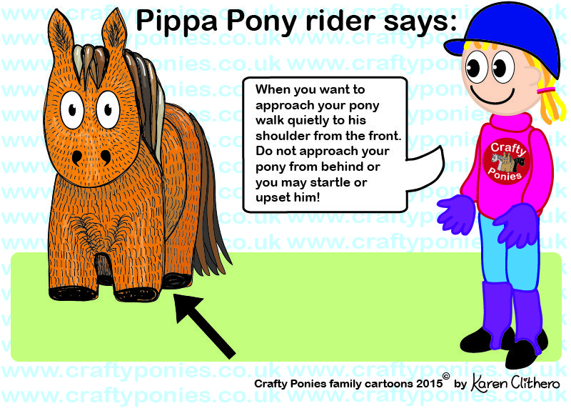 Pippa Pony Rider Show Us How To Approach Ponies Safely Pony