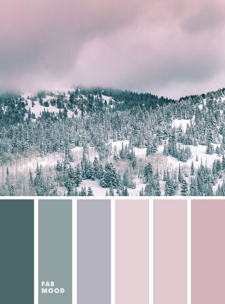 Mauve + Sage and Pine Green – Winter color palette