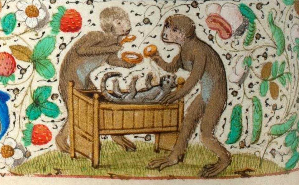 """Monos cuidando un gatito. """"Libro de Horas de Trivulzio"""" Flandes ca. 1470 (Den Haag, Koninklijke Bibliotheek, SMC 1, fol. 67v)  https://www.facebook.com/discardingimages"""