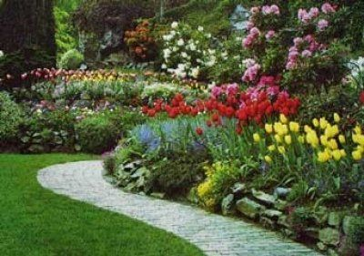 Imagen Relacionada Paisajismo Diseno De Jardinespatios - Paisajismo-jardines