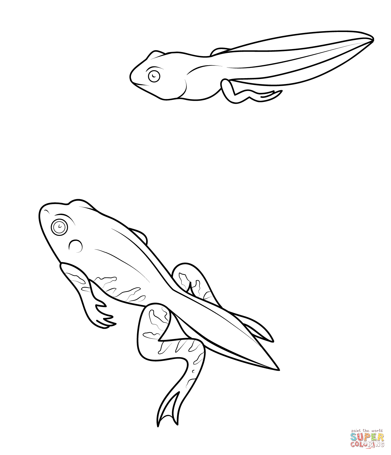 Tadpole Coloring Pages Coloring Pages Free Printable Coloring Pages Frog Art