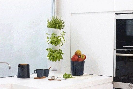 Jard n vertical rinc n minigarden blanco peque os for Jardin vertical cocina