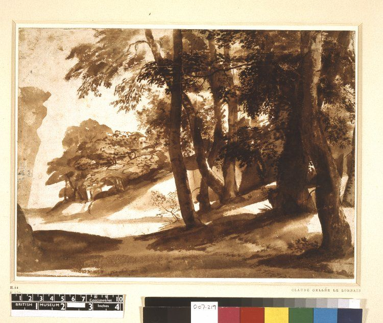 Claude Lorrain Wooded landscape; trees on a bank at r. c.1640 Brush drawing in brown wash, touched with pen and brown ink
