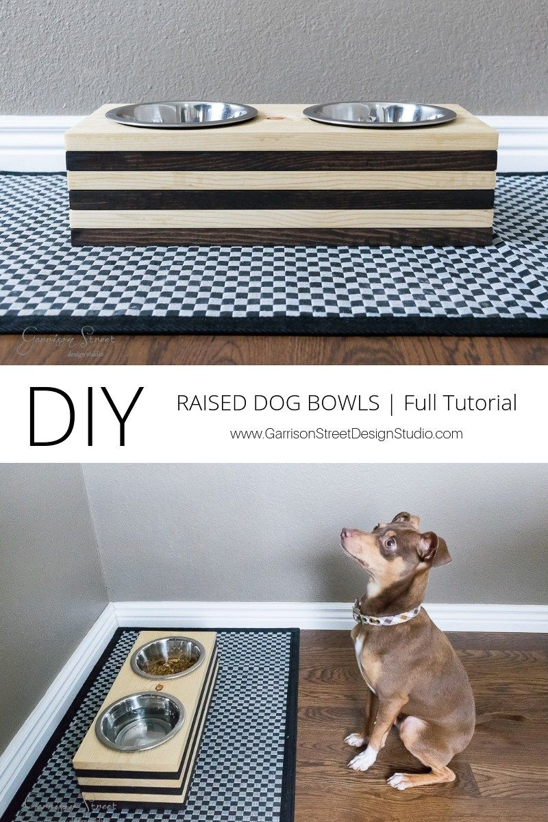 Diy raised dog bowls dog bowls raised dog bowls diy