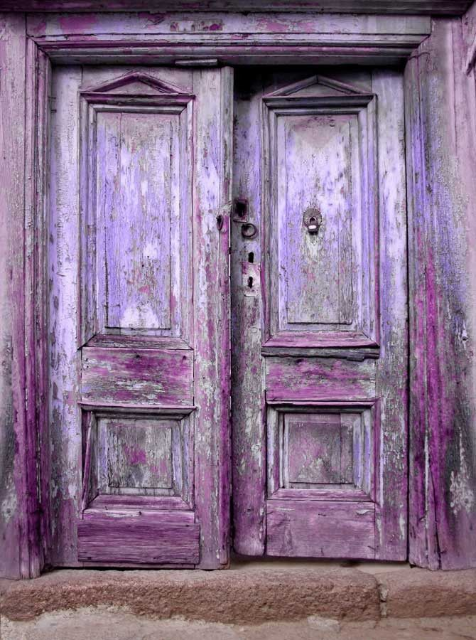 9141 Purple Doors Backdrop