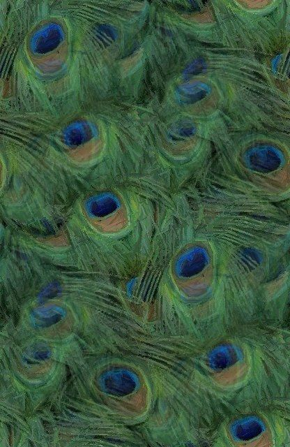 Peacock Wallpapers and Pictures | 22 Items | Page 1 of 1