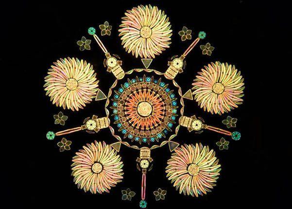diatom arrangement - Αναζήτηση Google