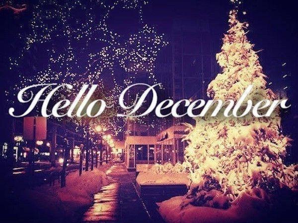 #hellodecemberchristmas