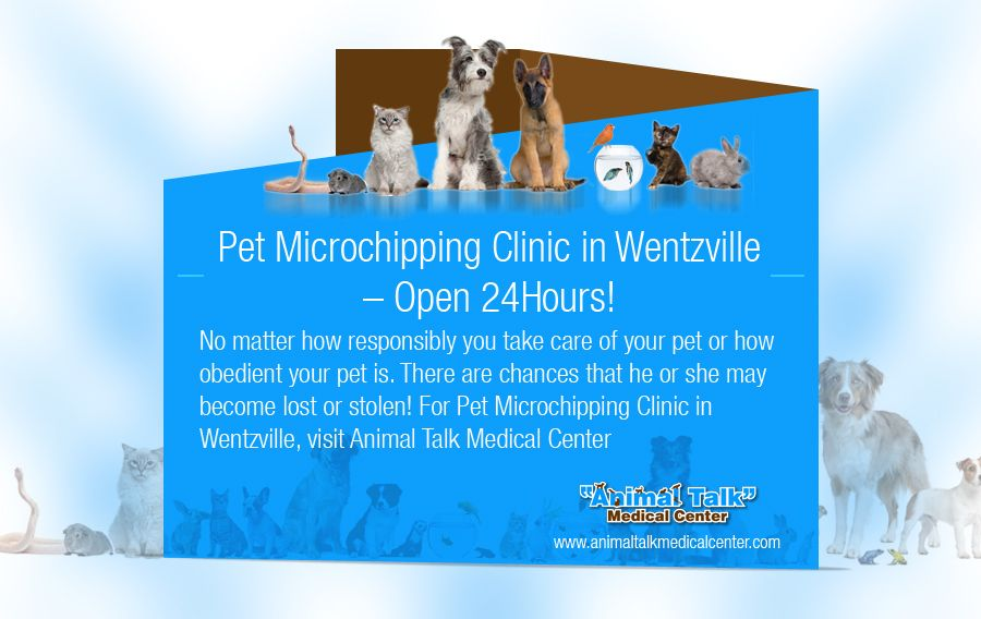Pet Microchipping Clinic In Wentzville Open 24hours No Matter How Responsibly You Take Care Of Your Pet Or Emergency Vet Clinic Vet Clinics Medical Center