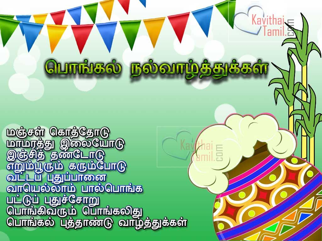 Pongal festival tamil wishes pongal tamil short poems with high pongal festival tamil wishes pongal tamil short poems with high quality images for share on facebook m4hsunfo