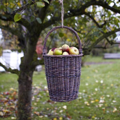 Decorar los arboles