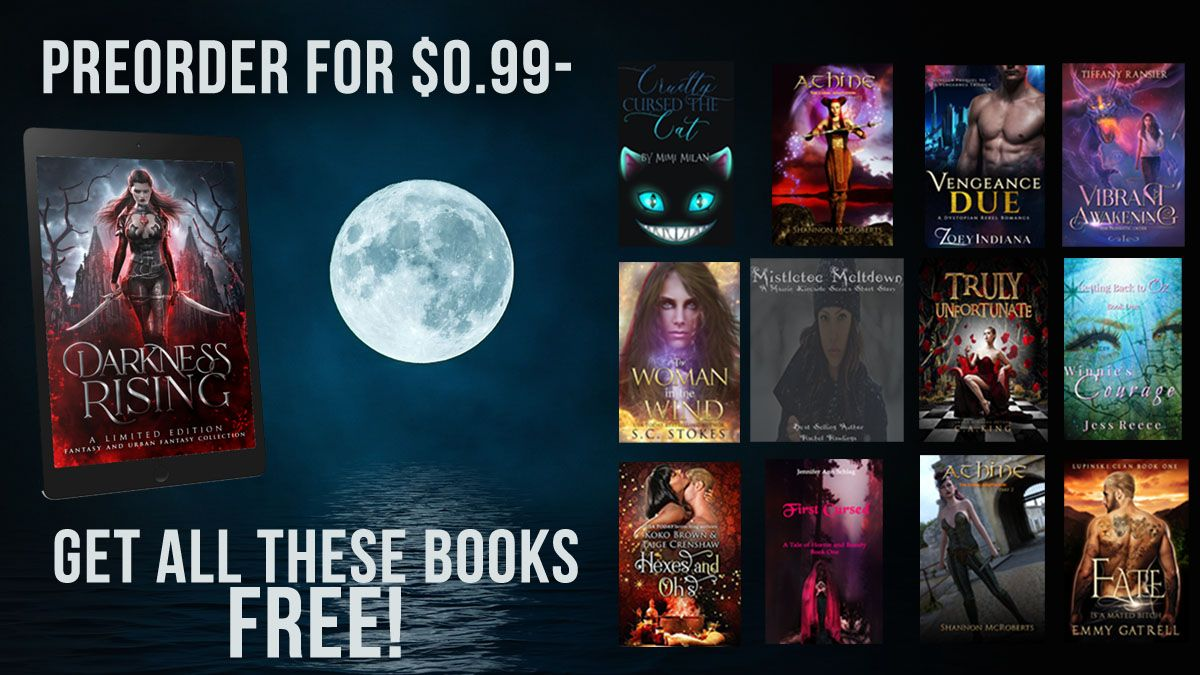 Preorder Darkness Rising and received 12 free books