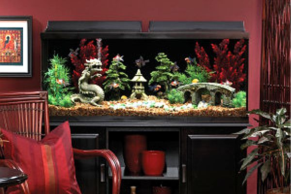 Modern Vintage Home Decor Ideas: 10 Gallon Fish Tank Stand Ideas For Your Aquarium