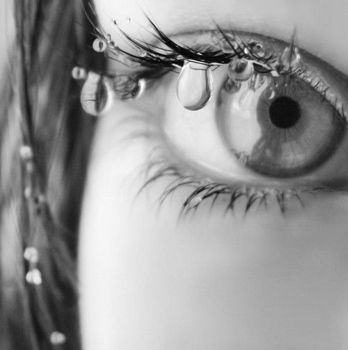 Pin by Bobbi H on Black, White and Shades of Gray | Eye pictures, Beautiful  eyes images, Beautiful eyes