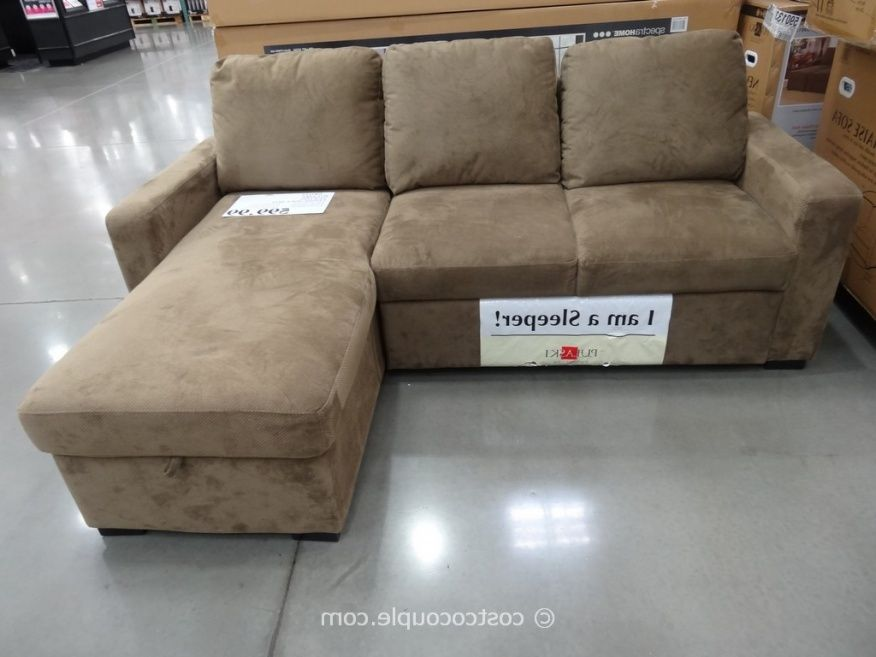 Sleeper Sofa At Costco