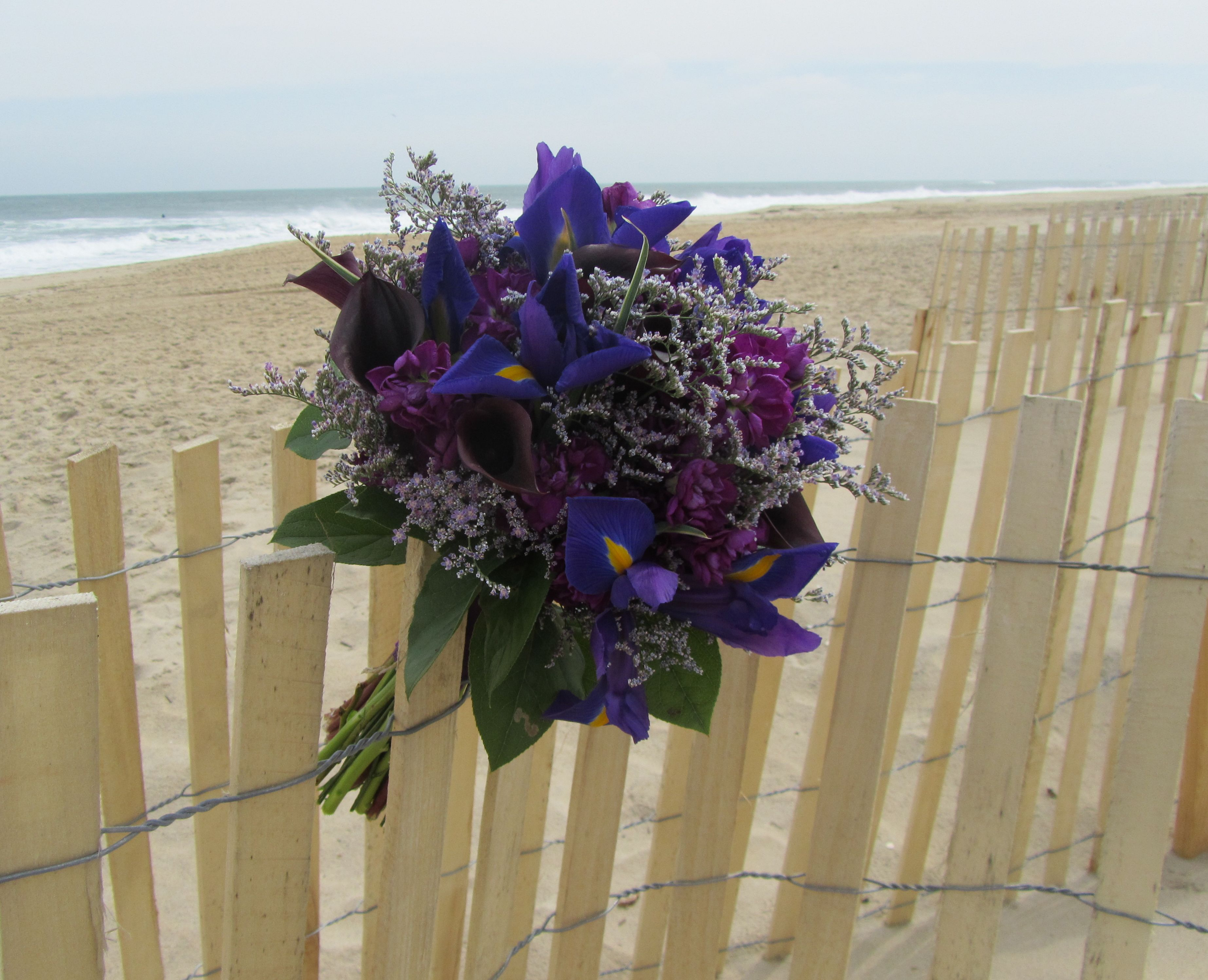 Limonium Is A Feathery Bluepurple Flower That Looks Marvelous As An