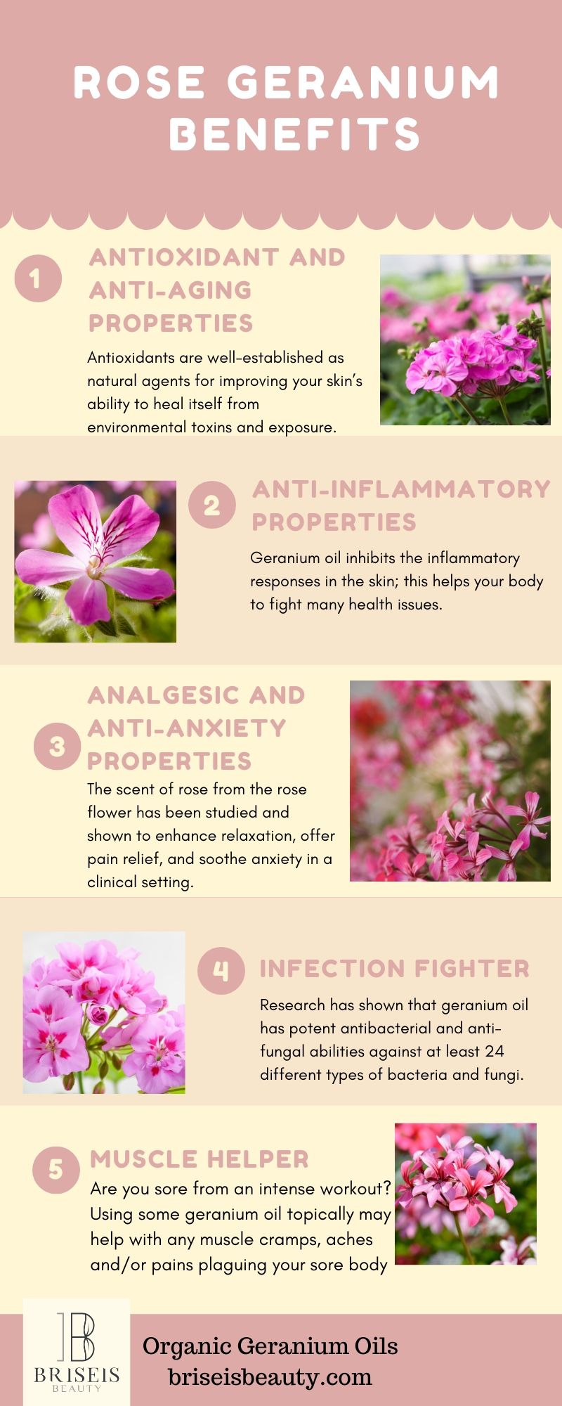Learn About The Benefits Of Rose Geranium Rose Rosegeraniumbenefits Rose Geranium Geraniums Body Oil