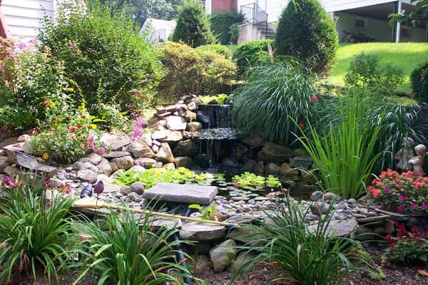 Ideas For Pond Decorating Outdoortheme Com Pond Landscaping Pond Plants Ponds Backyard