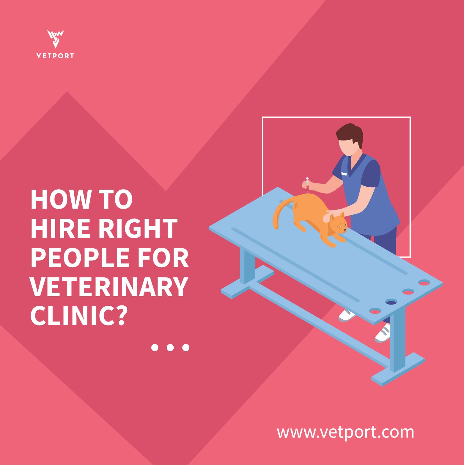 Hiring The Right People For Veterinary Clinic Veterinary Clinic Veterinary Clinic