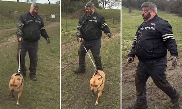 Don T Even Talk To Me Funny Clip Shows Dog Walker Covered In Mud