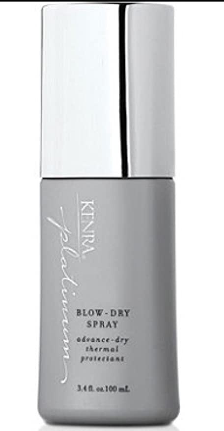 Kenra Platinum Blow Dry Spray: Amazon.com.au: Beauty