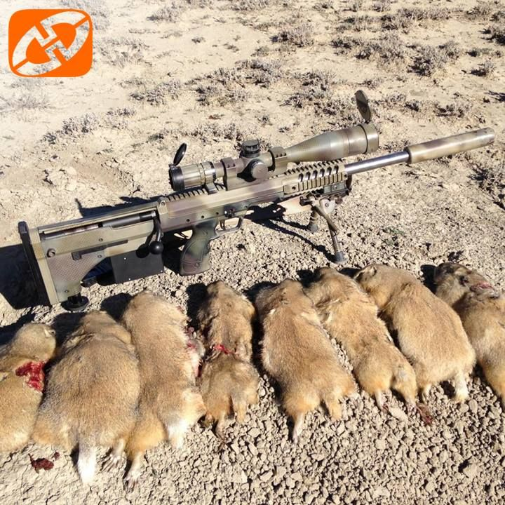 Pin On Hunting With A Desert Tech Rifle