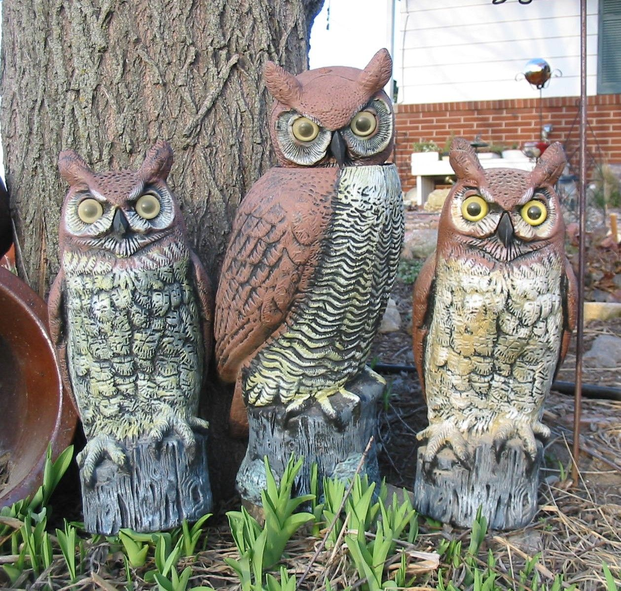 Garden Accessories Owls What A Hoot Outdoor Decor Lawn Ornament Or Statue