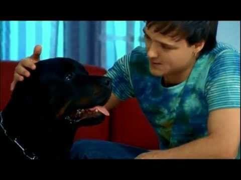 Юрий Шатунов - Не бойся (официальный клип) 2004 - YouTube