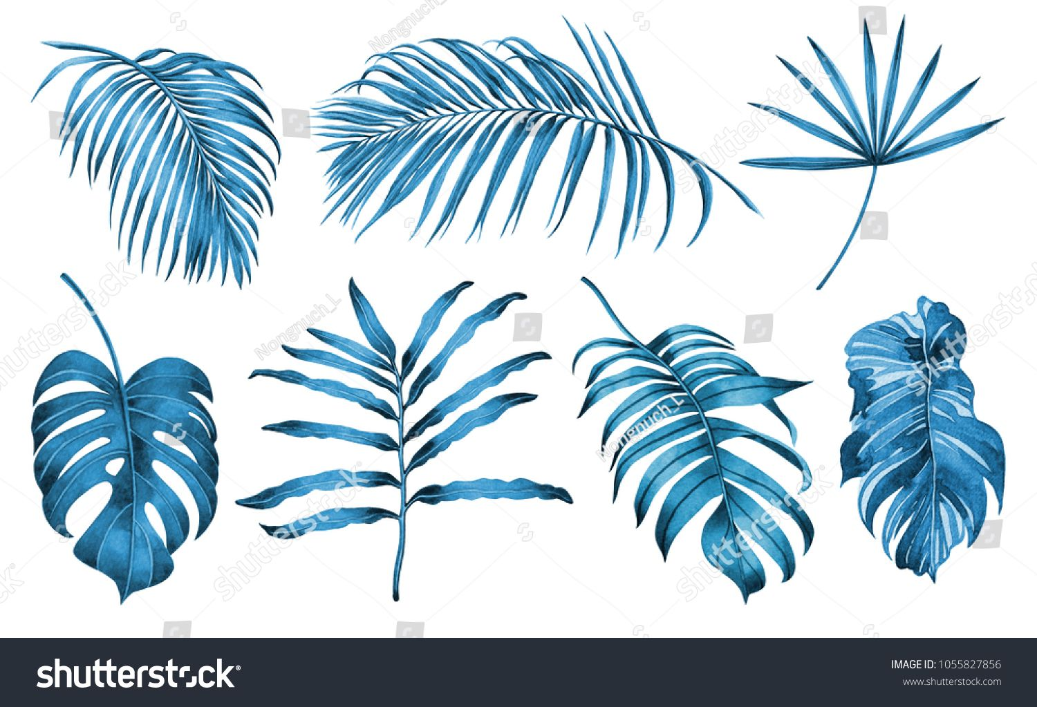 Watercolor Painting Blue And White Set Of Coconut Palm Leaf