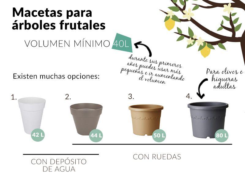 Macetas para arboles frutales todo para el huerto jardin for Cultivo de arboles frutales en macetas