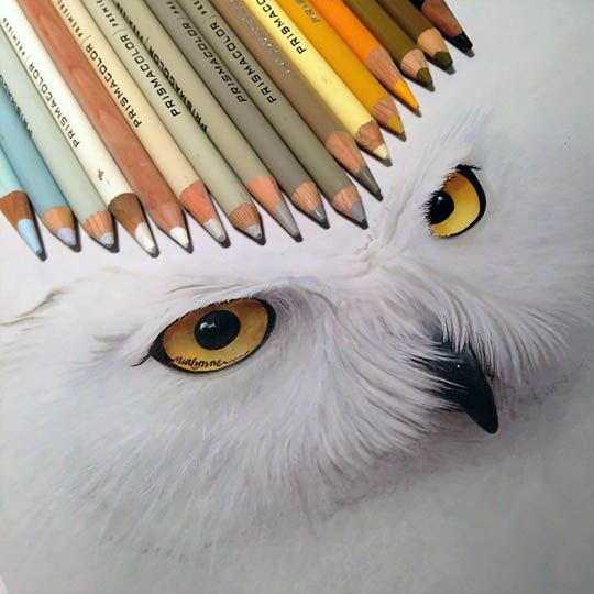 Highly Realistic Drawings By Karla Mialynne Mashkulture Color